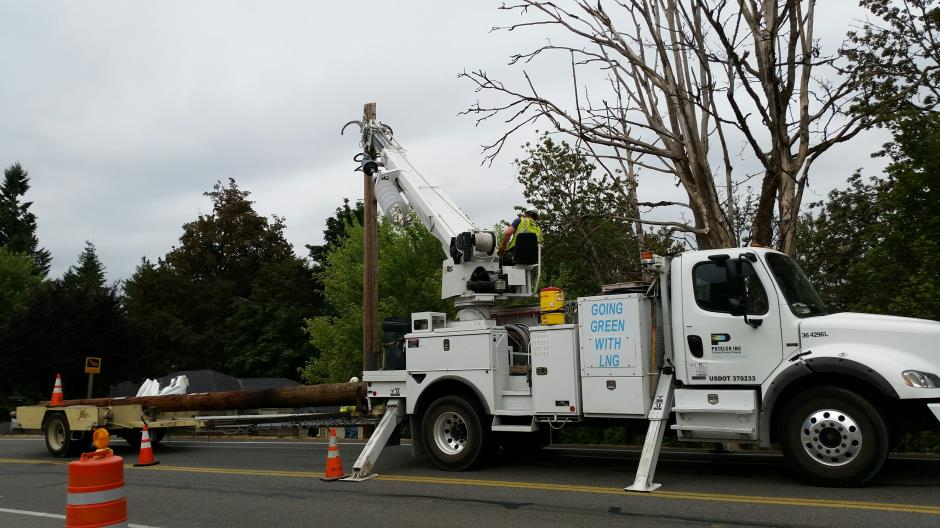 T-28a - Witte Road - Pole Removal (2) 072415