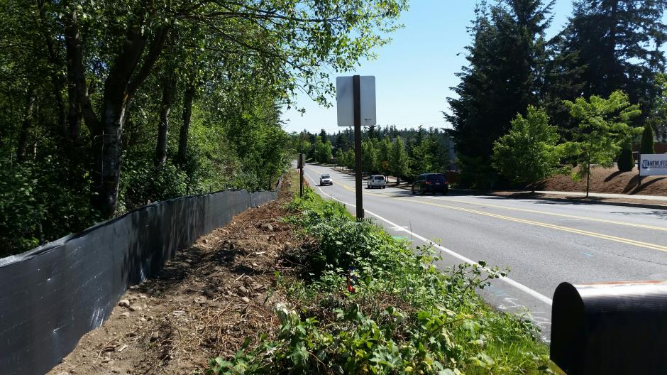 T-38 - 216th Ave SE - Erosion Control East Side