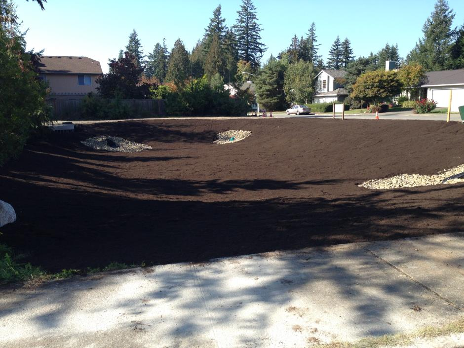 S-12 -- Fernwood - Pond Before Seeding