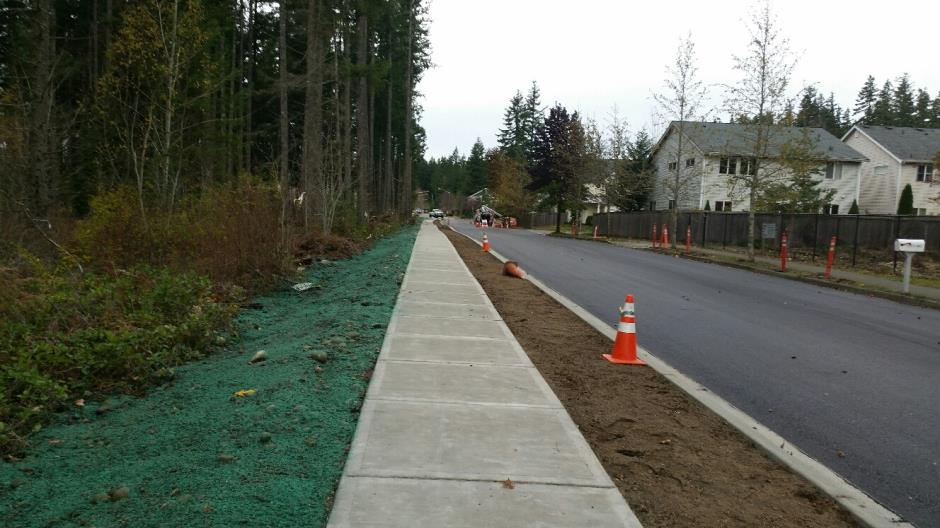 T-33b - 240th Ave SE - Paved Looking North - 111816